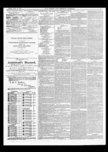 Advertising|1865-07-14|The Cardiff and Merthyr Guardian