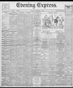 Advertising|1895-10-24|Evening Express - Welsh Newspapers Online