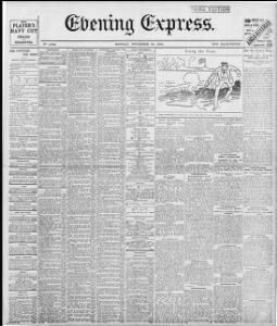 Advertising|1895-11-25|Evening Express - Welsh Newspapers