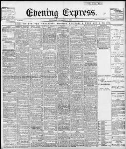 Advertising|1898-12-08|Evening Express - Welsh Newspapers