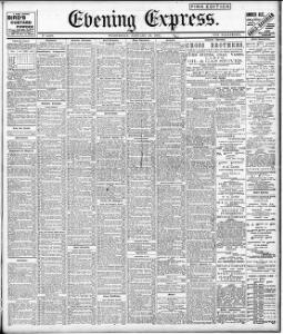 Advertising|1901-01-23|Evening Express - Welsh Newspapers Online