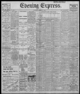 Advertising 1902-03-15 Evening Express - Welsh Newspapers