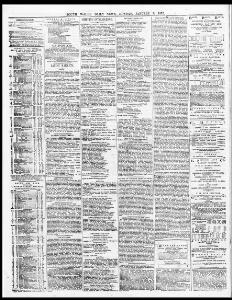 Advertising 1876-01-03 South Wales Daily News - Welsh Newspapers