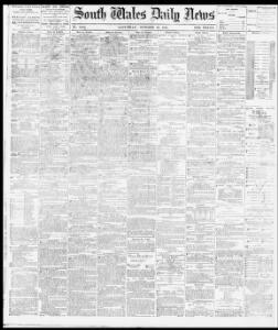 Advertising|1881-10-29|South Wales Daily News - Welsh