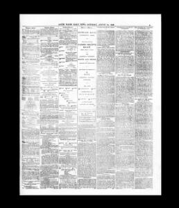 Advertising|1883-08-11|South Wales Daily News - Welsh