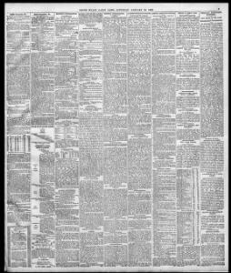 Advertising|1895-01-19|South Wales Daily News - Welsh Newspapers
