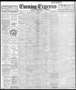 Advertising|1904-06-25|Evening Express - Welsh Newspapers