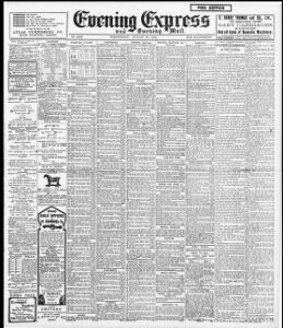 Advertising|1904-08-10|Evening Express - Welsh Newspapers Online