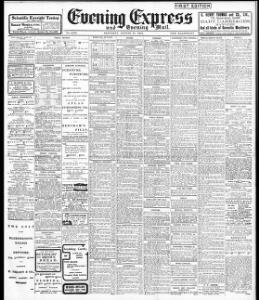 Advertising|1904-08-27|Evening Express - Welsh Newspapers