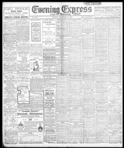 Advertising 1904-11-22 Evening Express - Welsh Newspapers