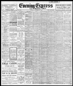 Advertising 1908-11-24 Evening Express - Welsh Newspapers Online