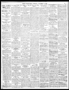 THE ALLEGED FENIAN MURDER AT SOLIHULL |1885-11-17|South