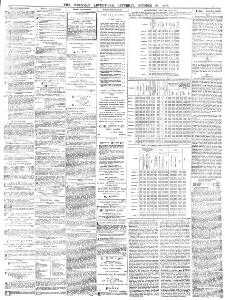 Advertising|1876-10-28|Wrexham and Denbighshire Advertiser and
